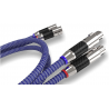 RICABLE VX2 INVICTUS XLR 2 MT